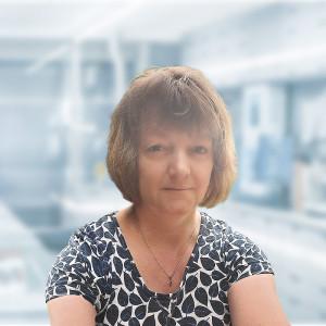 Prof. Iva Matolínová