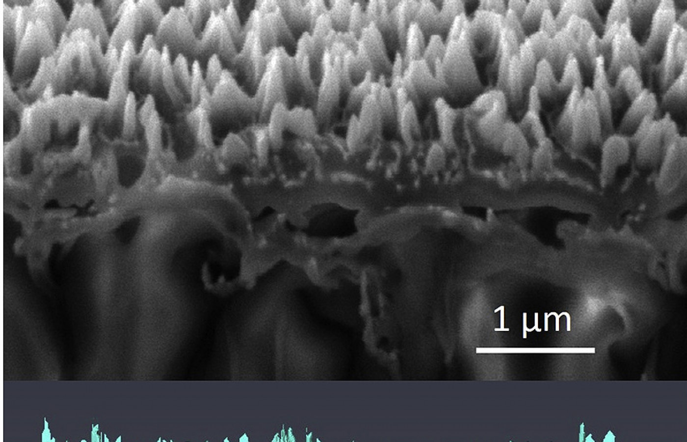 New publications on nanostructured catalysts